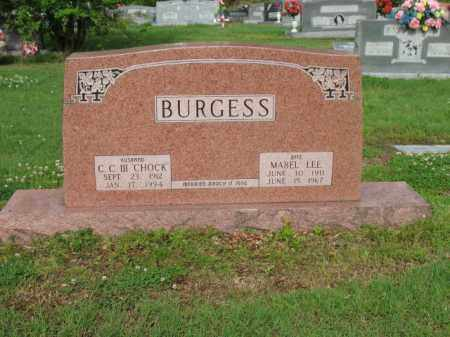WILLIAMSON BURGESS, MABEL LEE - Jackson County, Arkansas | MABEL LEE WILLIAMSON BURGESS - Arkansas Gravestone Photos
