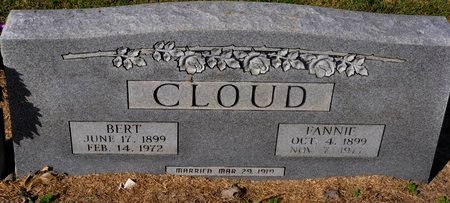CLOUD, FANNIE - Jackson County, Arkansas | FANNIE CLOUD - Arkansas Gravestone Photos