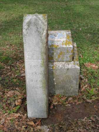 DAUGHERTY, EDNA H - Jackson County, Arkansas | EDNA H DAUGHERTY - Arkansas Gravestone Photos