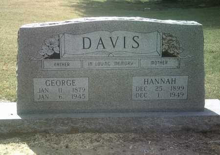 DAVIS, GEORGE - Jackson County, Arkansas | GEORGE DAVIS - Arkansas Gravestone Photos