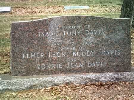DAVIS, ISAAC TONY - Jackson County, Arkansas | ISAAC TONY DAVIS - Arkansas Gravestone Photos