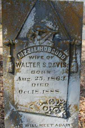 HOBGOOD DAVIS (PIC2), LIZZIE - Jackson County, Arkansas   LIZZIE HOBGOOD DAVIS (PIC2) - Arkansas Gravestone Photos