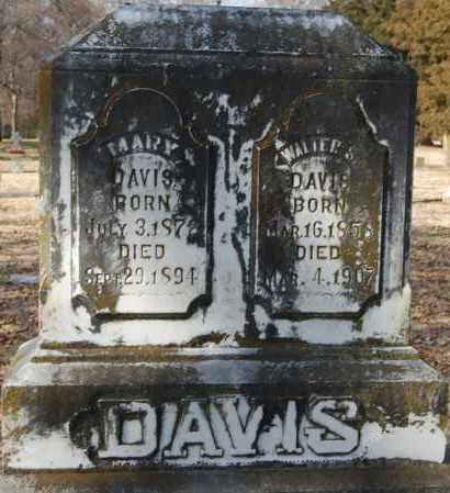 DAVIS, WALTER S - Jackson County, Arkansas | WALTER S DAVIS - Arkansas Gravestone Photos