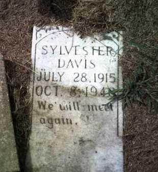 DAVIS, SYLVESTER - Jackson County, Arkansas | SYLVESTER DAVIS - Arkansas Gravestone Photos