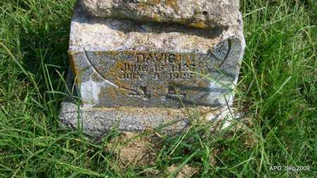 DAVIS, LOUISE - Jackson County, Arkansas | LOUISE DAVIS - Arkansas Gravestone Photos