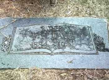 DAVIS, W H - Jackson County, Arkansas | W H DAVIS - Arkansas Gravestone Photos