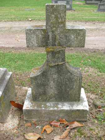 MINOR, THEO F - Jackson County, Arkansas | THEO F MINOR - Arkansas Gravestone Photos