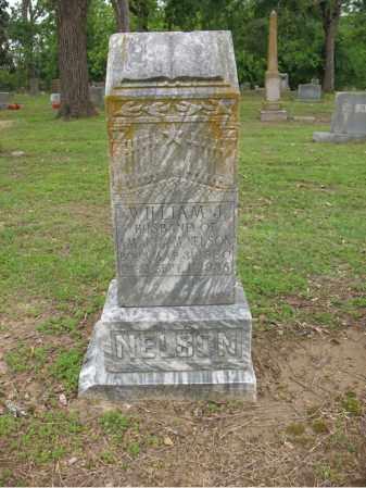 NELSON, WILLIAM J - Jackson County, Arkansas | WILLIAM J NELSON - Arkansas Gravestone Photos