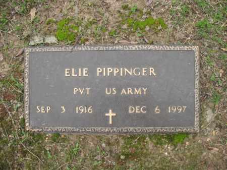 PIPPINGER (VETERAN), ELIE - Jackson County, Arkansas | ELIE PIPPINGER (VETERAN) - Arkansas Gravestone Photos