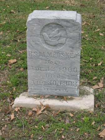 POSKEY, MARY E - Jackson County, Arkansas | MARY E POSKEY - Arkansas Gravestone Photos
