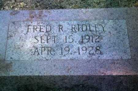 RIDLEY, FRED R - Jackson County, Arkansas | FRED R RIDLEY - Arkansas Gravestone Photos
