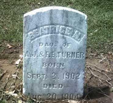 TURNER, BEATRICE N - Jackson County, Arkansas | BEATRICE N TURNER - Arkansas Gravestone Photos