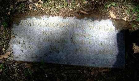 WILDER (VETERAN WWI), ELMER WORTHEY - Jackson County, Arkansas   ELMER WORTHEY WILDER (VETERAN WWI) - Arkansas Gravestone Photos