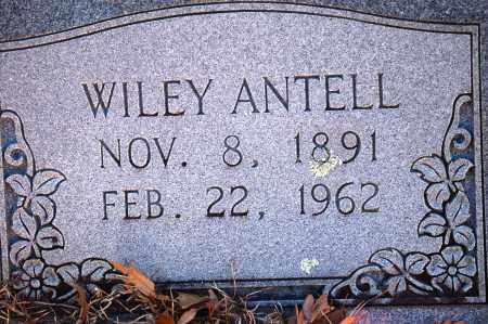 ANTELL, WILEY - Jefferson County, Arkansas | WILEY ANTELL - Arkansas Gravestone Photos