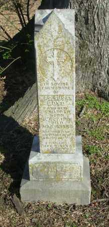 STARK BOYD, SUSAN THERESA - Jefferson County, Arkansas | SUSAN THERESA STARK BOYD - Arkansas Gravestone Photos
