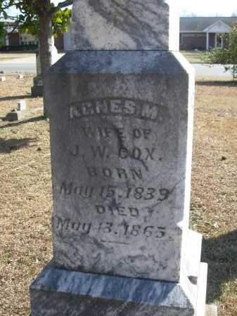 FORD COX, AGNES M. - Jefferson County, Arkansas   AGNES M. FORD COX - Arkansas Gravestone Photos