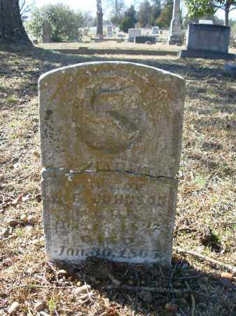 JOHNSON, ELIZABETH - Jefferson County, Arkansas | ELIZABETH JOHNSON - Arkansas Gravestone Photos