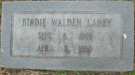 LANEY, BRIDIE - Jefferson County, Arkansas | BRIDIE LANEY - Arkansas Gravestone Photos
