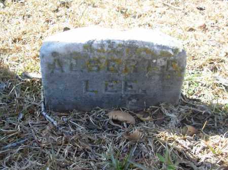 LEE, ALBERT E. - Jefferson County, Arkansas | ALBERT E. LEE - Arkansas Gravestone Photos