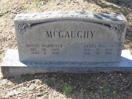 MCGAUGHY, JAMES PORTER - Jefferson County, Arkansas | JAMES PORTER MCGAUGHY - Arkansas Gravestone Photos