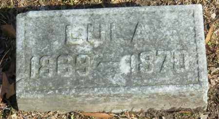 MCGAUGHY, LULA - Jefferson County, Arkansas | LULA MCGAUGHY - Arkansas Gravestone Photos