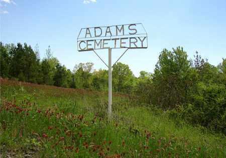 *ADAM CEMETERY GATE,  - Johnson County, Arkansas |  *ADAM CEMETERY GATE - Arkansas Gravestone Photos