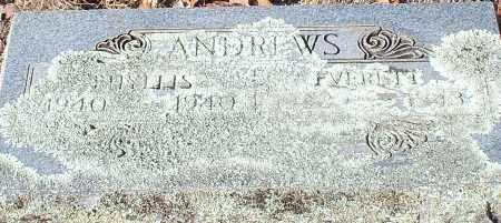 ANDREWS, PHYLLIS - Johnson County, Arkansas | PHYLLIS ANDREWS - Arkansas Gravestone Photos