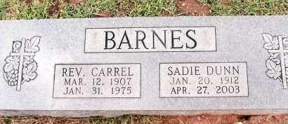 DUNN BARNES, SADIE - Johnson County, Arkansas | SADIE DUNN BARNES - Arkansas Gravestone Photos