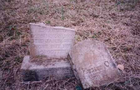 BEASLEY, EUGENE - Johnson County, Arkansas | EUGENE BEASLEY - Arkansas Gravestone Photos