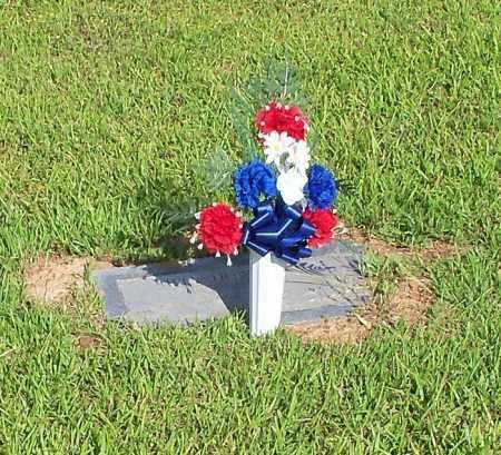 BELL, BILLY DOWE - Johnson County, Arkansas | BILLY DOWE BELL - Arkansas Gravestone Photos
