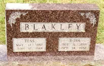 BLAKLEY, TESS - Johnson County, Arkansas | TESS BLAKLEY - Arkansas Gravestone Photos