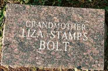 BOLT, LIZA - Johnson County, Arkansas | LIZA BOLT - Arkansas Gravestone Photos