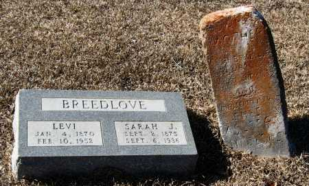 BREEDLOVE, LEVI - Johnson County, Arkansas | LEVI BREEDLOVE - Arkansas Gravestone Photos