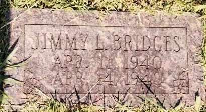 BRIDGES, JIMMY L - Johnson County, Arkansas | JIMMY L BRIDGES - Arkansas Gravestone Photos
