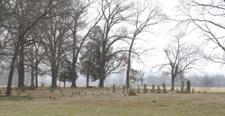 *BROWN CEMETERY OVERVIEW,  - Johnson County, Arkansas    *BROWN CEMETERY OVERVIEW - Arkansas Gravestone Photos