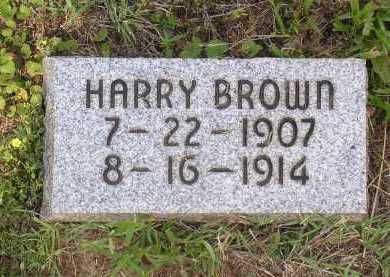 BROWN, HARRY - Johnson County, Arkansas   HARRY BROWN - Arkansas Gravestone Photos