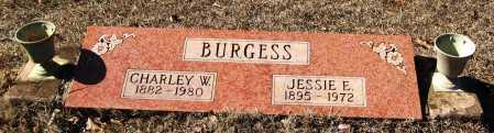 BURGESS, JESSIE E - Johnson County, Arkansas   JESSIE E BURGESS - Arkansas Gravestone Photos