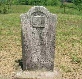 CAREY, JOHN CALEB - Johnson County, Arkansas | JOHN CALEB CAREY - Arkansas Gravestone Photos