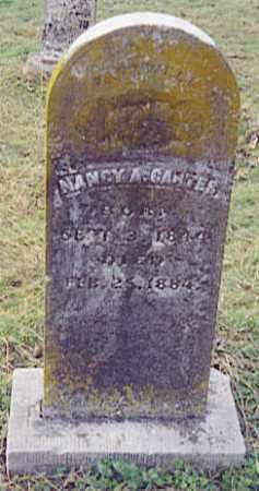 CARTER, NANCY ANN - Johnson County, Arkansas | NANCY ANN CARTER - Arkansas Gravestone Photos