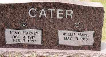 HOUSTON CATER, WILLIE MARIE - Johnson County, Arkansas   WILLIE MARIE HOUSTON CATER - Arkansas Gravestone Photos