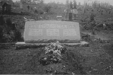 CHRONISTER, MARY ANN - Johnson County, Arkansas   MARY ANN CHRONISTER - Arkansas Gravestone Photos