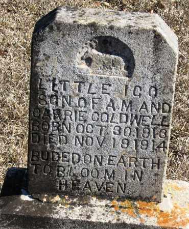 COLDWELL, ICO - Johnson County, Arkansas | ICO COLDWELL - Arkansas Gravestone Photos