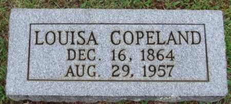 COPELAND, LOUISA - Johnson County, Arkansas | LOUISA COPELAND - Arkansas Gravestone Photos