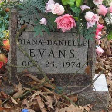 EVANS, DIANA DANIELLE - Johnson County, Arkansas | DIANA DANIELLE EVANS - Arkansas Gravestone Photos