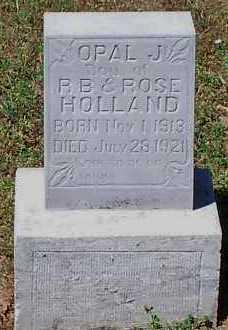 HOLLAND, OPAL J - Johnson County, Arkansas | OPAL J HOLLAND - Arkansas Gravestone Photos
