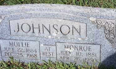 "JOHNSON, MARY ELIZABETH ""MOLLIE"" - Johnson County, Arkansas | MARY ELIZABETH ""MOLLIE"" JOHNSON - Arkansas Gravestone Photos"