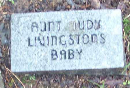 LIVINGSTON, INFANT - Johnson County, Arkansas | INFANT LIVINGSTON - Arkansas Gravestone Photos