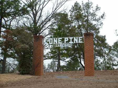 *LONE PINE CEMETERY GATE,  - Johnson County, Arkansas |  *LONE PINE CEMETERY GATE - Arkansas Gravestone Photos