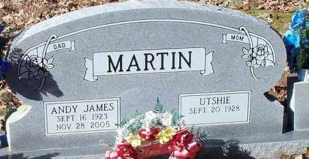 MARTIN, ANDY JAMES - Johnson County, Arkansas | ANDY JAMES MARTIN - Arkansas Gravestone Photos