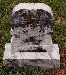 MARTIN, FAYE - Johnson County, Arkansas | FAYE MARTIN - Arkansas Gravestone Photos